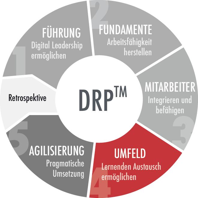 QD-Digital-drp-modell-umfeld