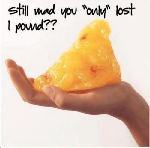 pound of fat.jpg