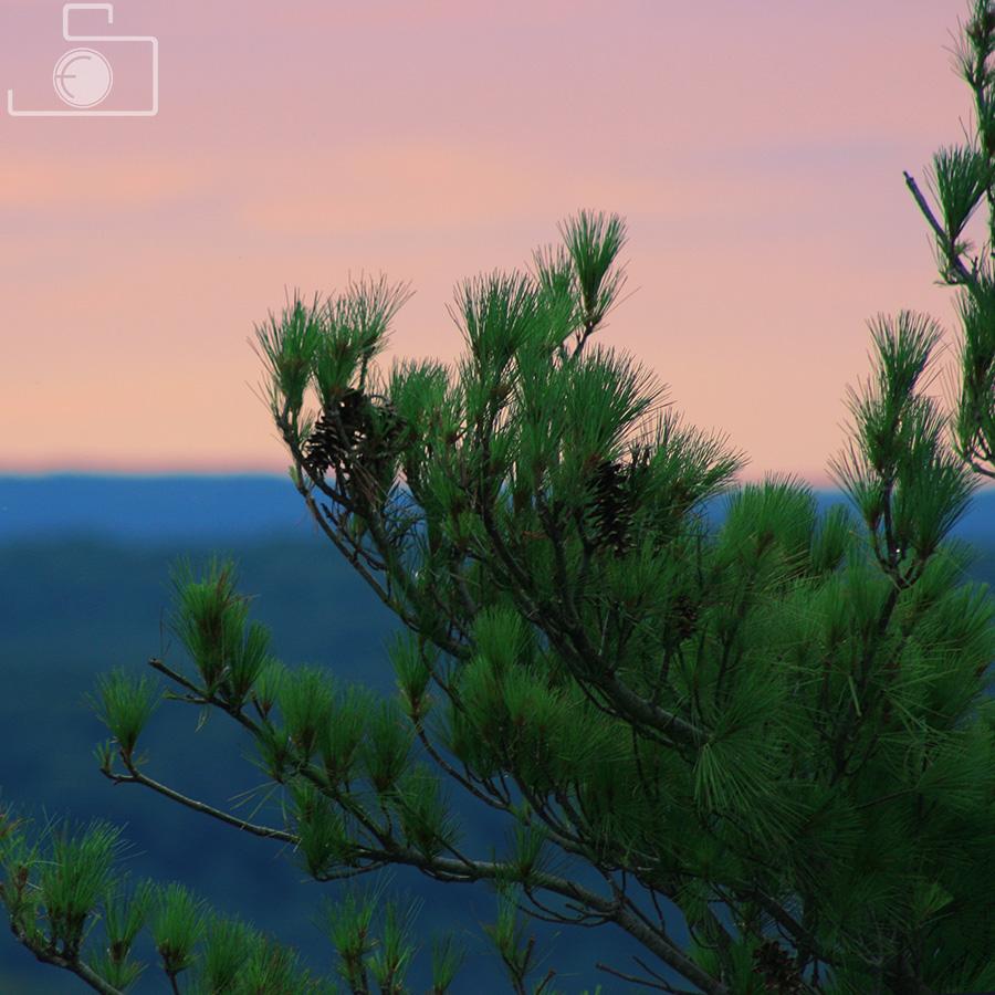 landscapes_15.jpg