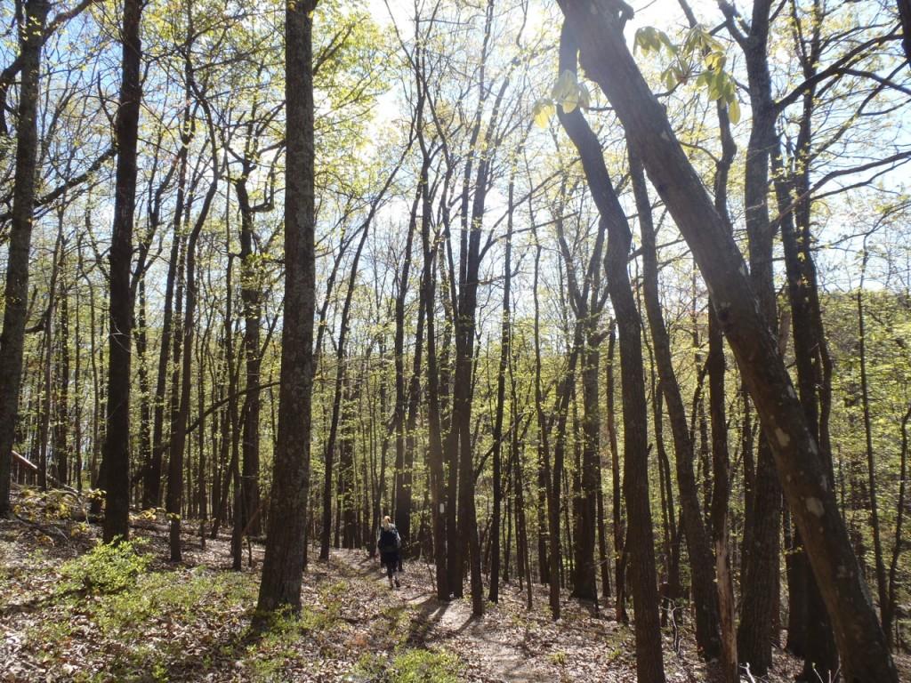 AT-thru-hike