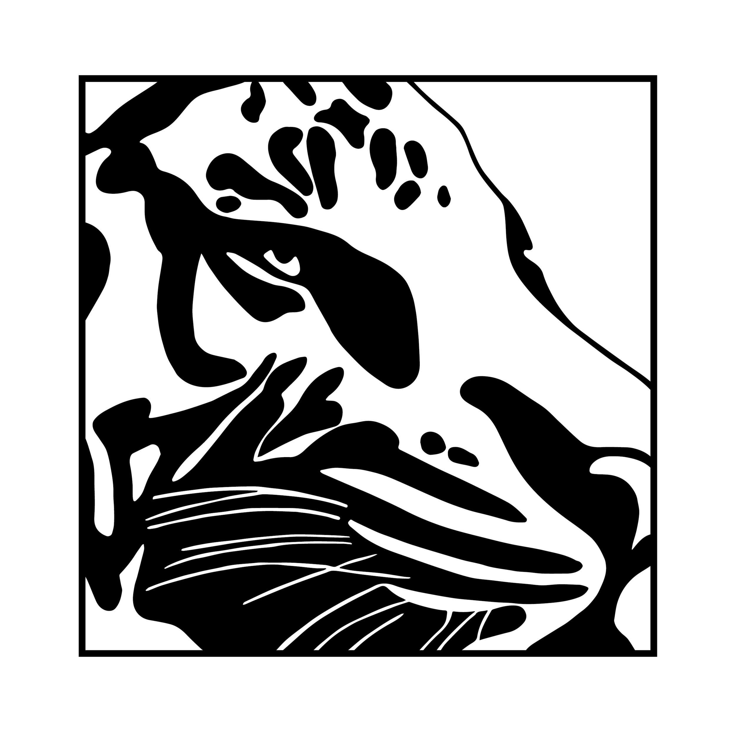 Graphic Stylization of a Leopard