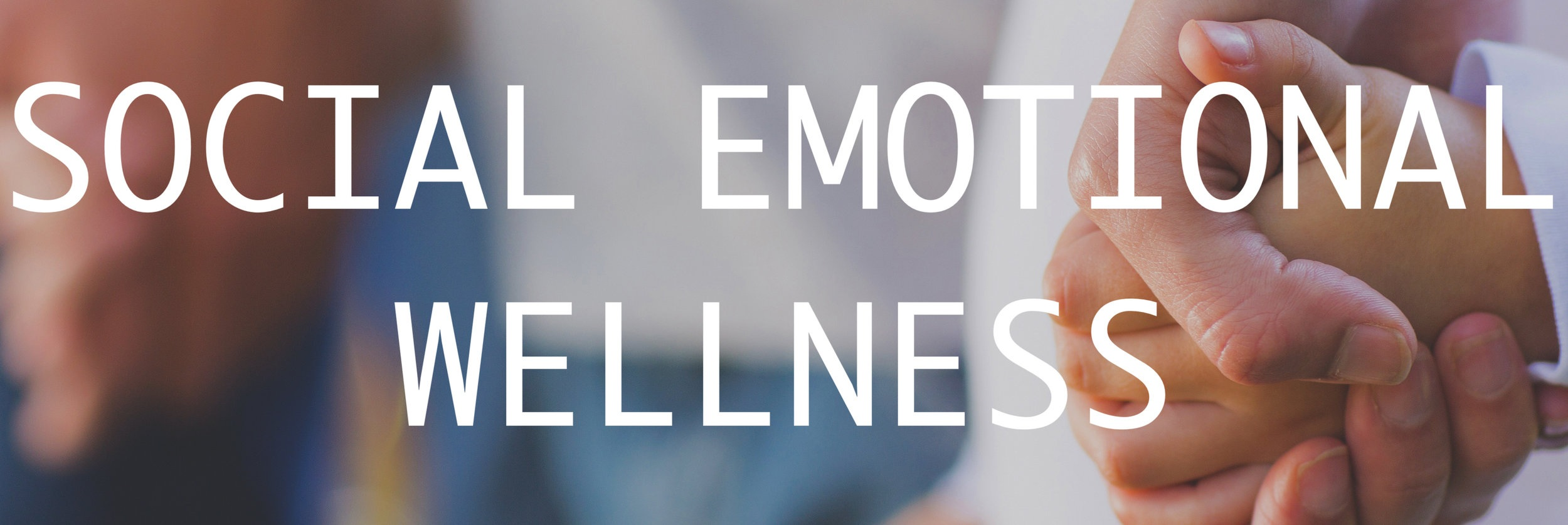 SOCIAL+EMOTIONAL+WELLNESS