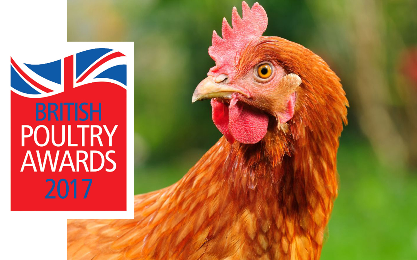 Poultry Awards 2017.jpg