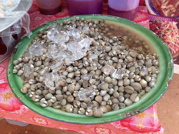 These pippis are a common streetfood, kept fresh by blocks of ice. They are barbecued to order over a hot grill.