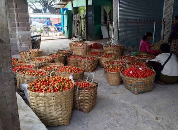 eatdrinklaos-inle-tomatoes