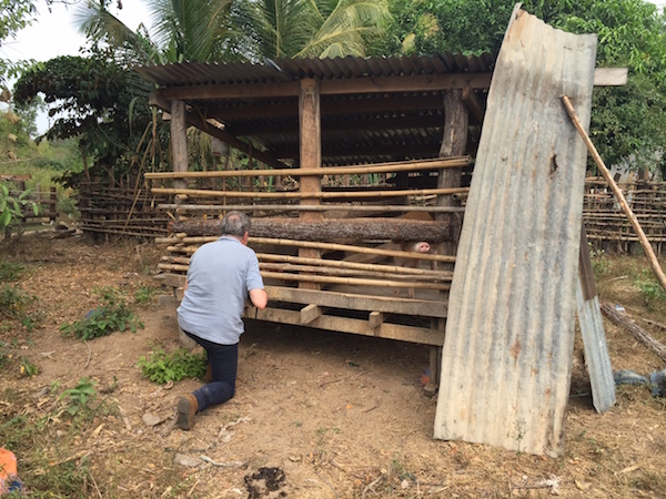 This is a typical pig enclosure in rural Laos. The animals are likely kept here only to eat and sleep (and because people are visiting)