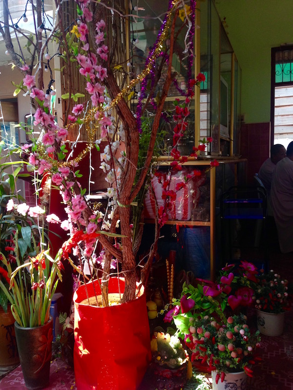 eatdrinklaos-springroll-corner-tet-tree