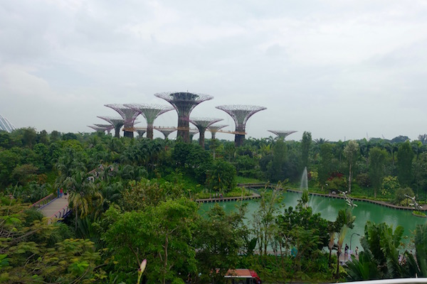 eatdrinklaos-singapore-best-family-fun-gardens-bay