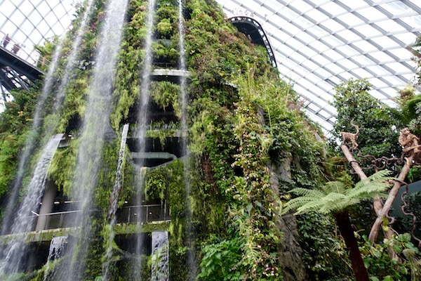 eatdrinklaos-singapore-best-family-fun-cloud-forest