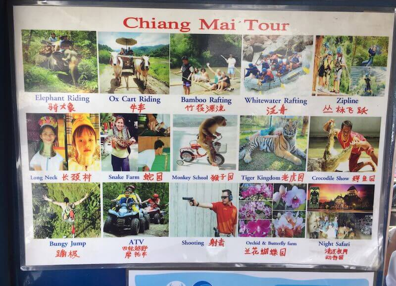 eatdrinklaos-thailand-chiang-mai-animal-exploitation