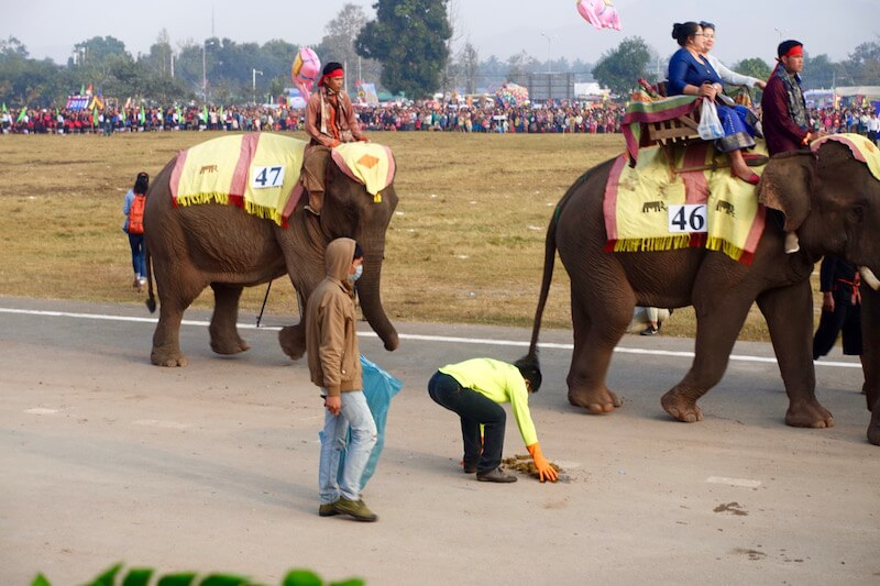 eatdrinklaos-xaignabouri-elephant-festival-poo