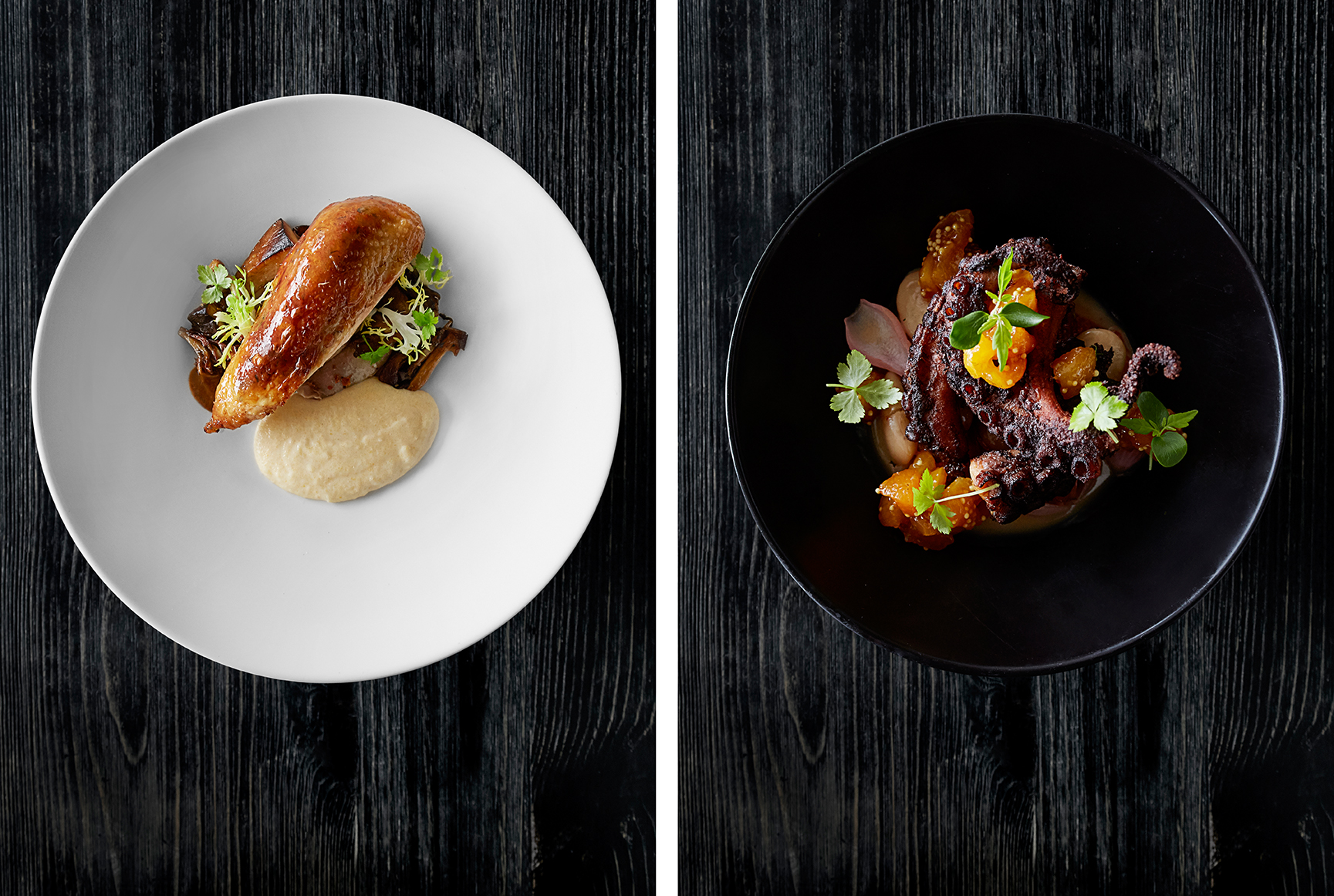 "Left: ""Lancaster Amish"" chicken ""alla cacciatore"", fughi misti, house cured pancetta and polenta. Right: Charred octopus ""gigante marinate"" and apricot mostarda."