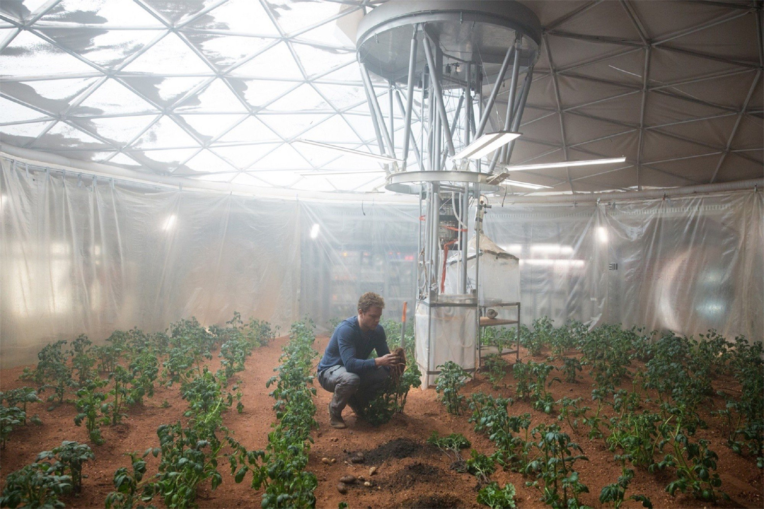 """Astronaut Mark Watney harvests his potatoes on Mars in 2015 science fiction film """"The Martian."""" 20th Century Fox"""