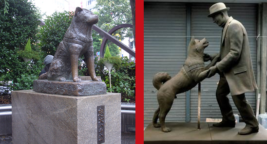 Pictures of the statues devoted to Hachiko's loyalty.