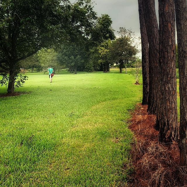 Pearland, we fed your mosquitoes. Your welcome. #discgolf