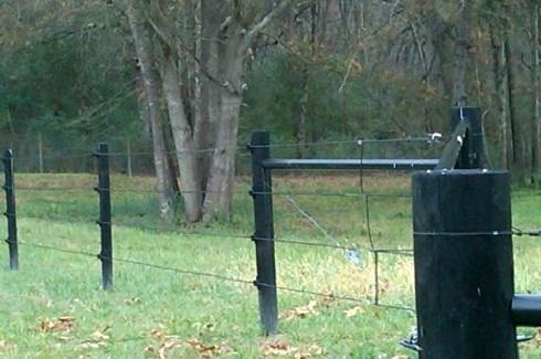 farm+4+rail+wire.jpg