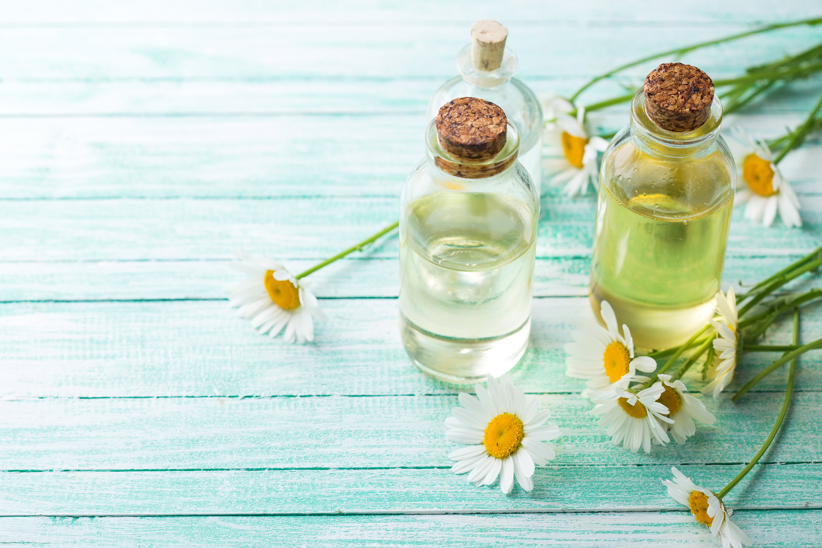 essential oils +sacred wellness - purity + potency matter