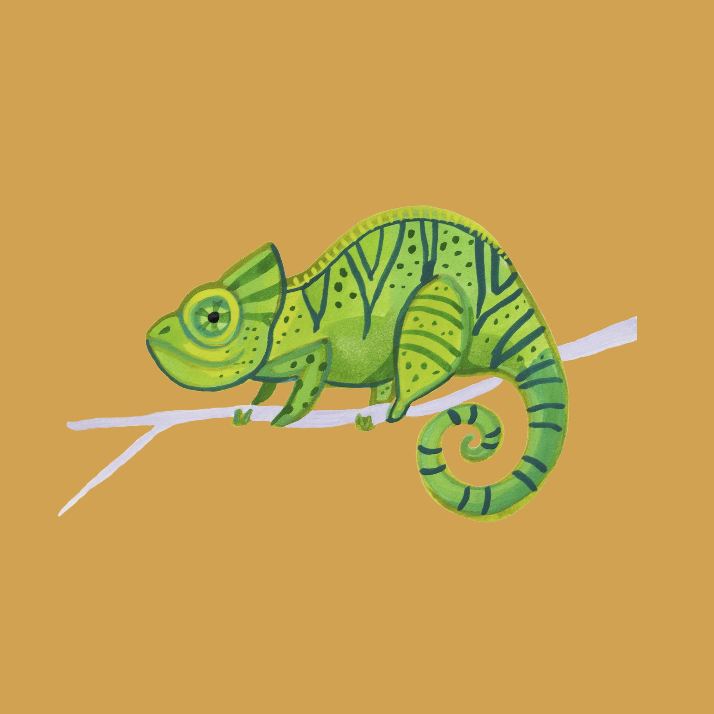 Chameleon 1 2.png