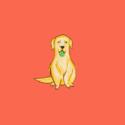 yellow lab with ball.png