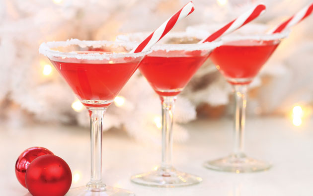 wilton-drinks-holiday.jpg