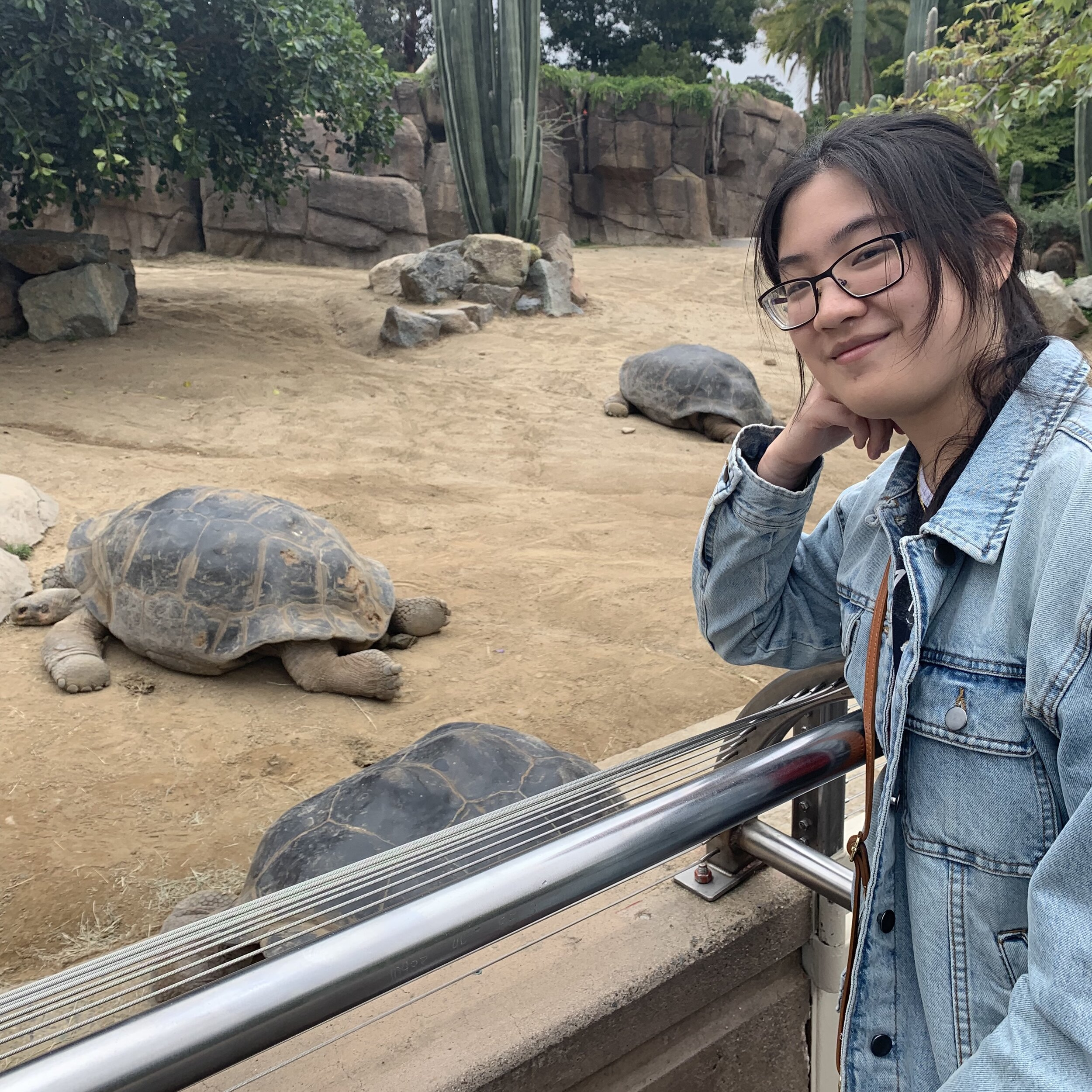 """Emily Yeh    Pronouns:  She/Her/Hers   Academic Year:  Freshman   Major:  Pre-Pharmacy   Hometown:  Monroeville, PA   Cultural Identity:  Chinese  """"I do a lot of reading, writing, and drawing. I played piano and viola for about a decade. I'm kinda introverted and a bit of an animation nerd."""""""