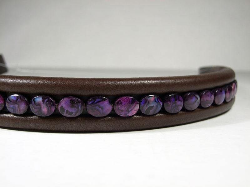 Purple Abalone