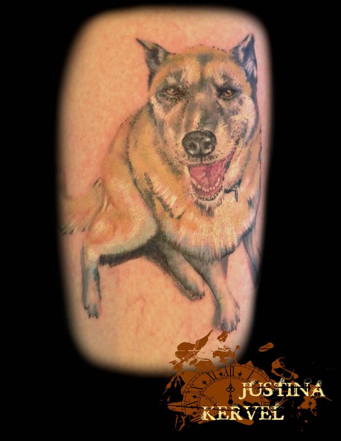 pet portrait dog justina kervel.jpg