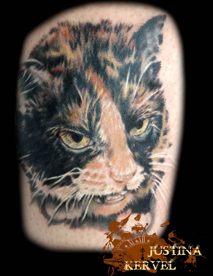 cat portrait justina kervel.jpg