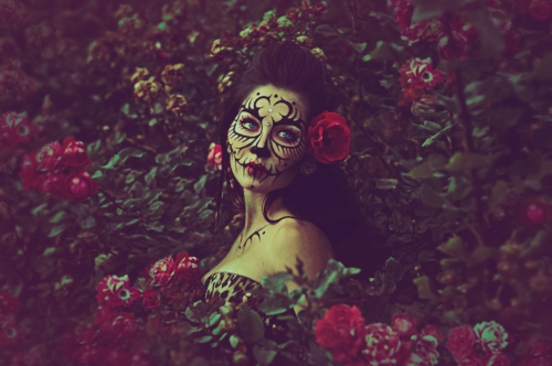 Madison-Roses.jpg
