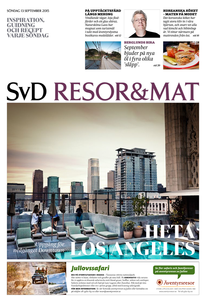 Svd-Downtown-Los-Angeles-1.jpg