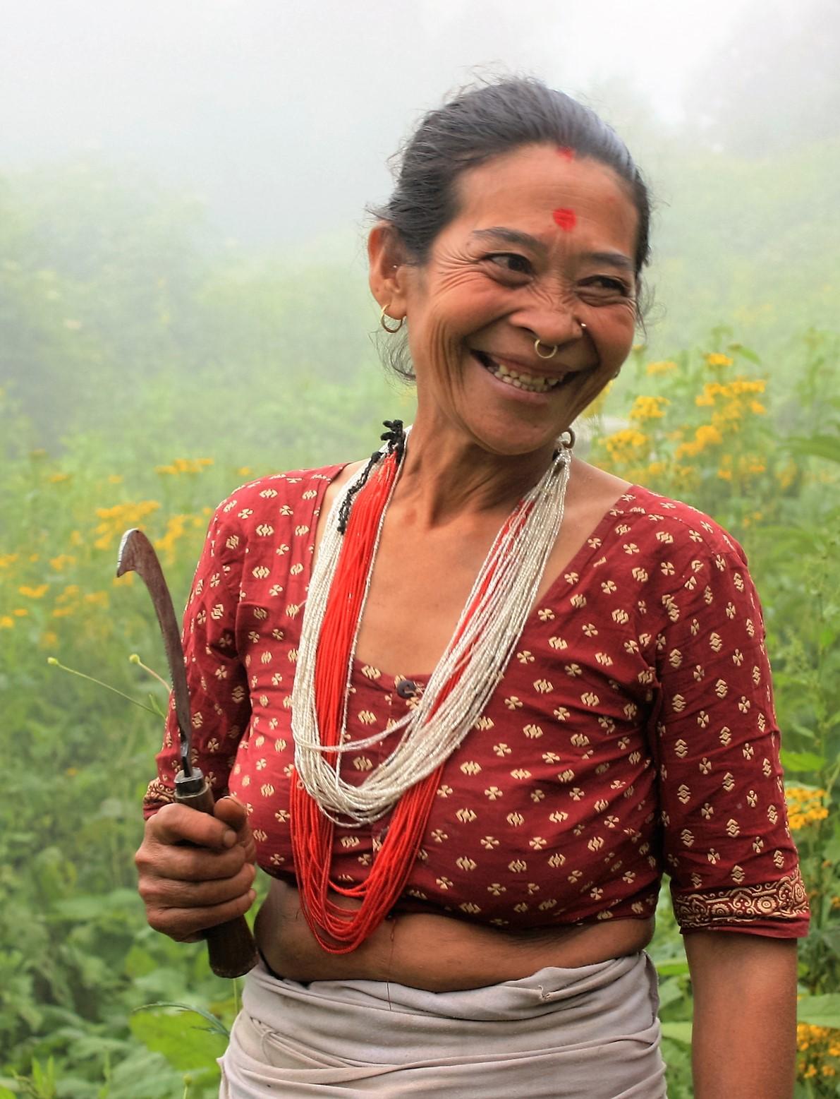Devi Maya Thami collecting Himalayan nettle.  Dolakha District