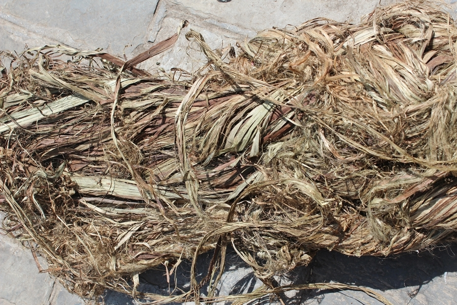 Raw fiber (bark ribbon)