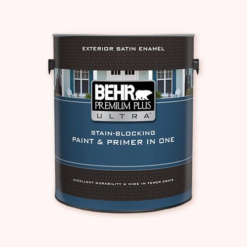 Behr Premium Plus Ultra Exterior for painting outdoor murals -