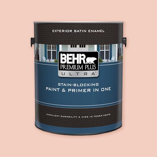 Behr Premium Plus UltraExterior for painting outdoor murals -