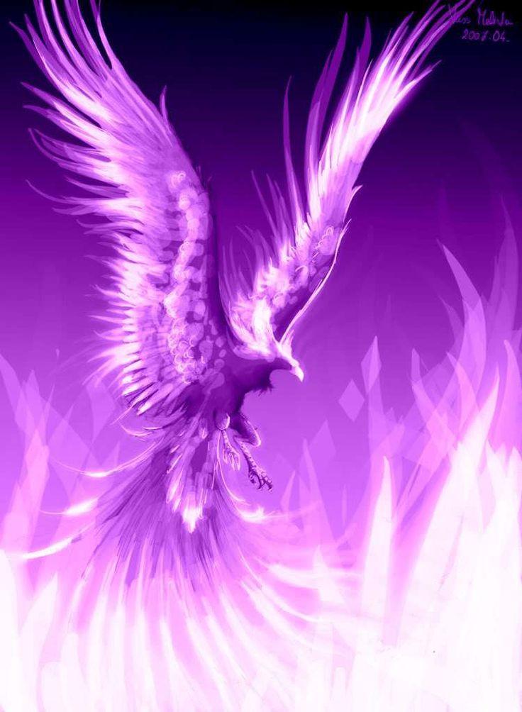 purple phoenix.jpg