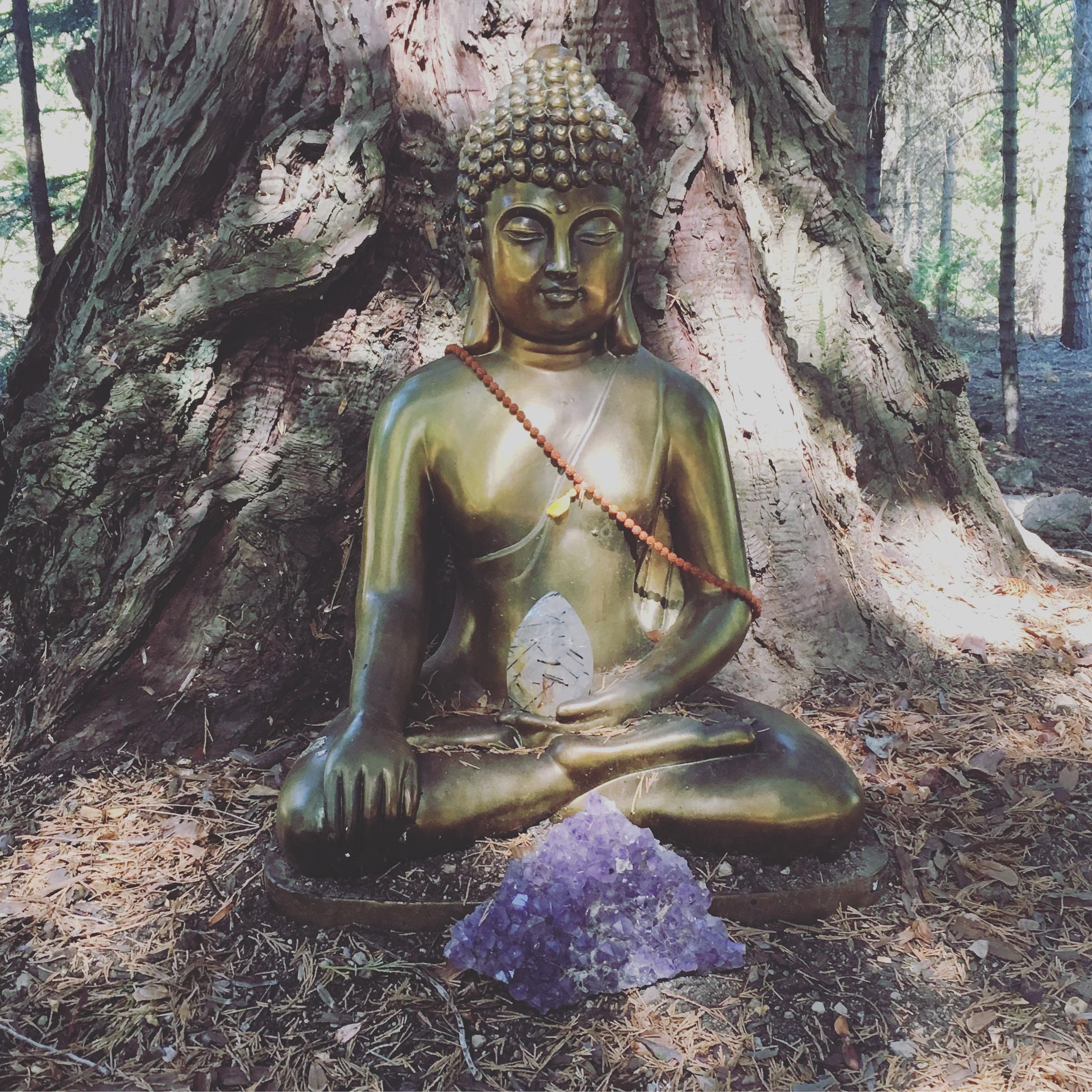 amethyst buddha.JPG