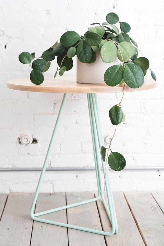 plant sidetable_birch light teal.jpg