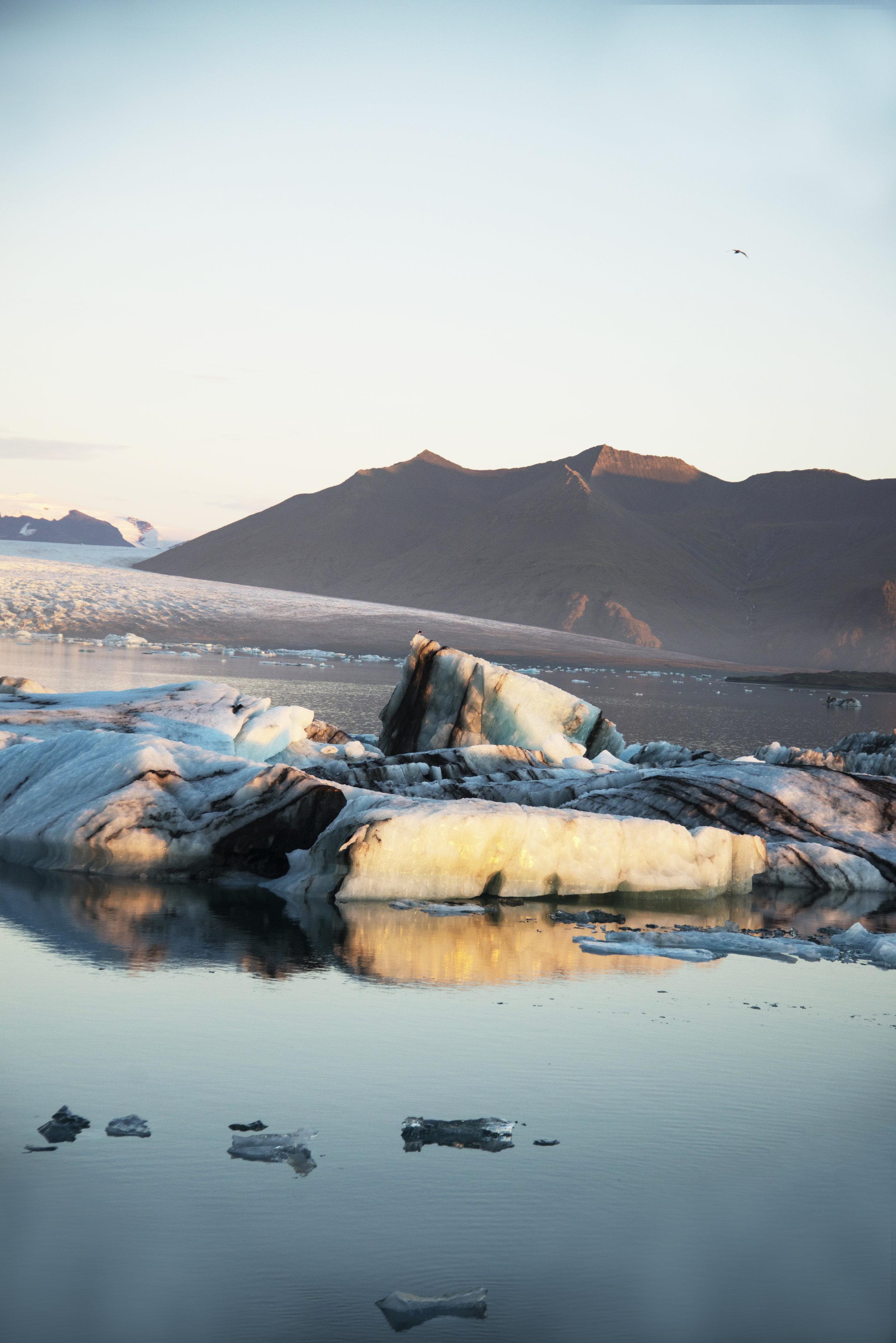 Sunrise at Jukosarlon Glacier Lagoon in Iceland.jpg