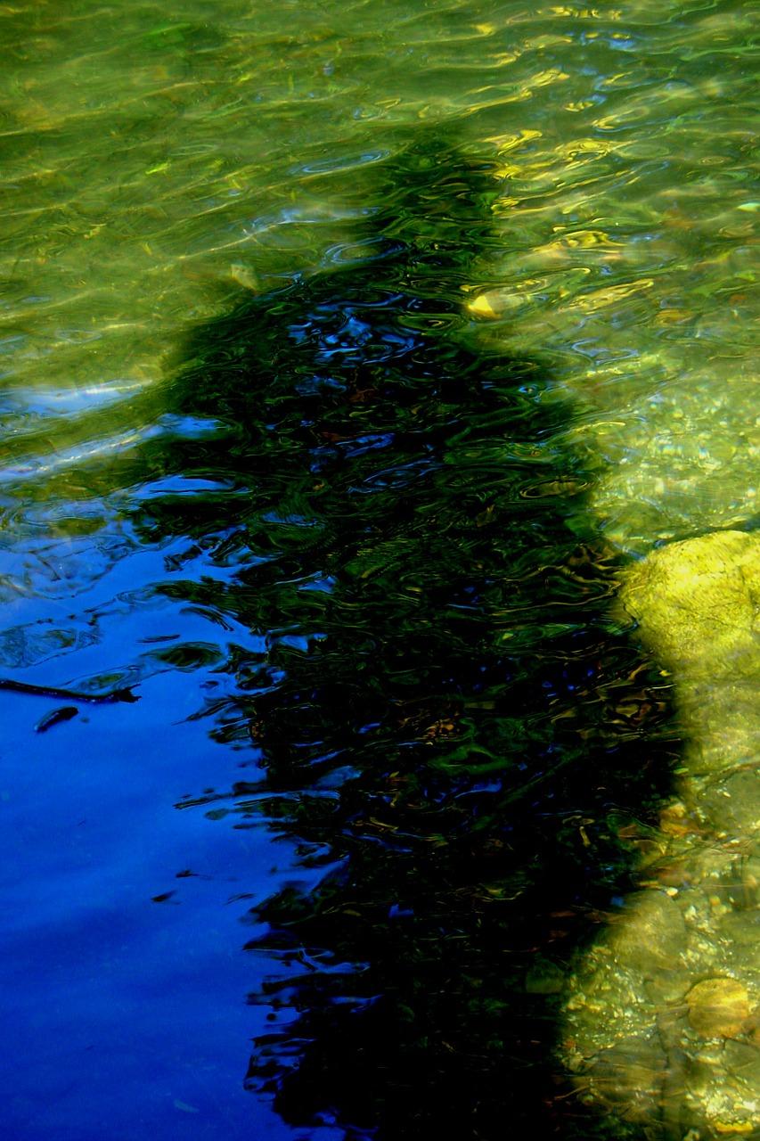 water-water-176334_1280.jpg