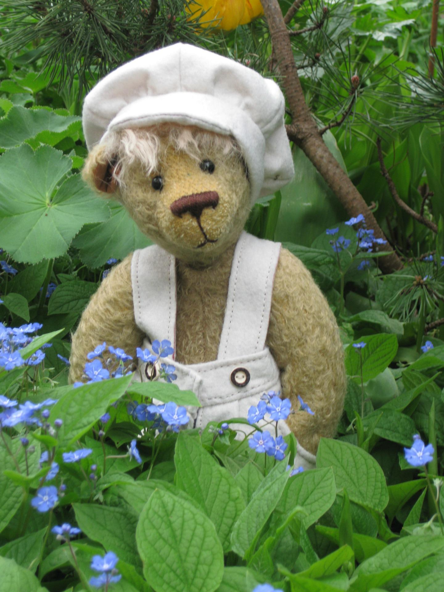 teddy-bear-73362_1920.jpg
