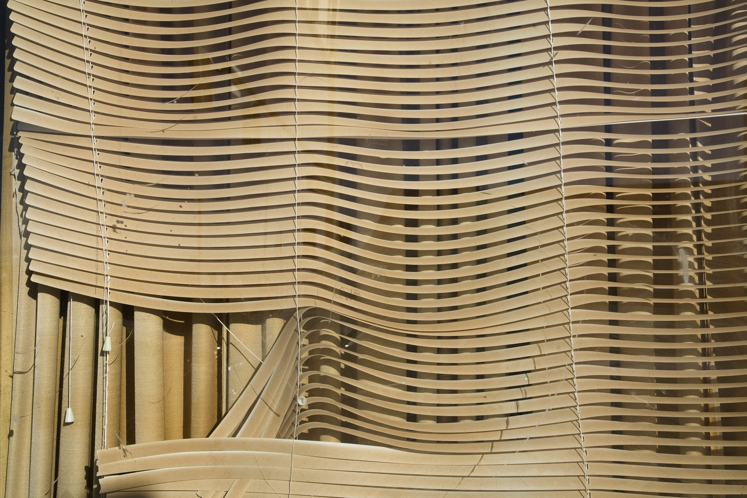 Venetian Blinds in the Sun,   2013