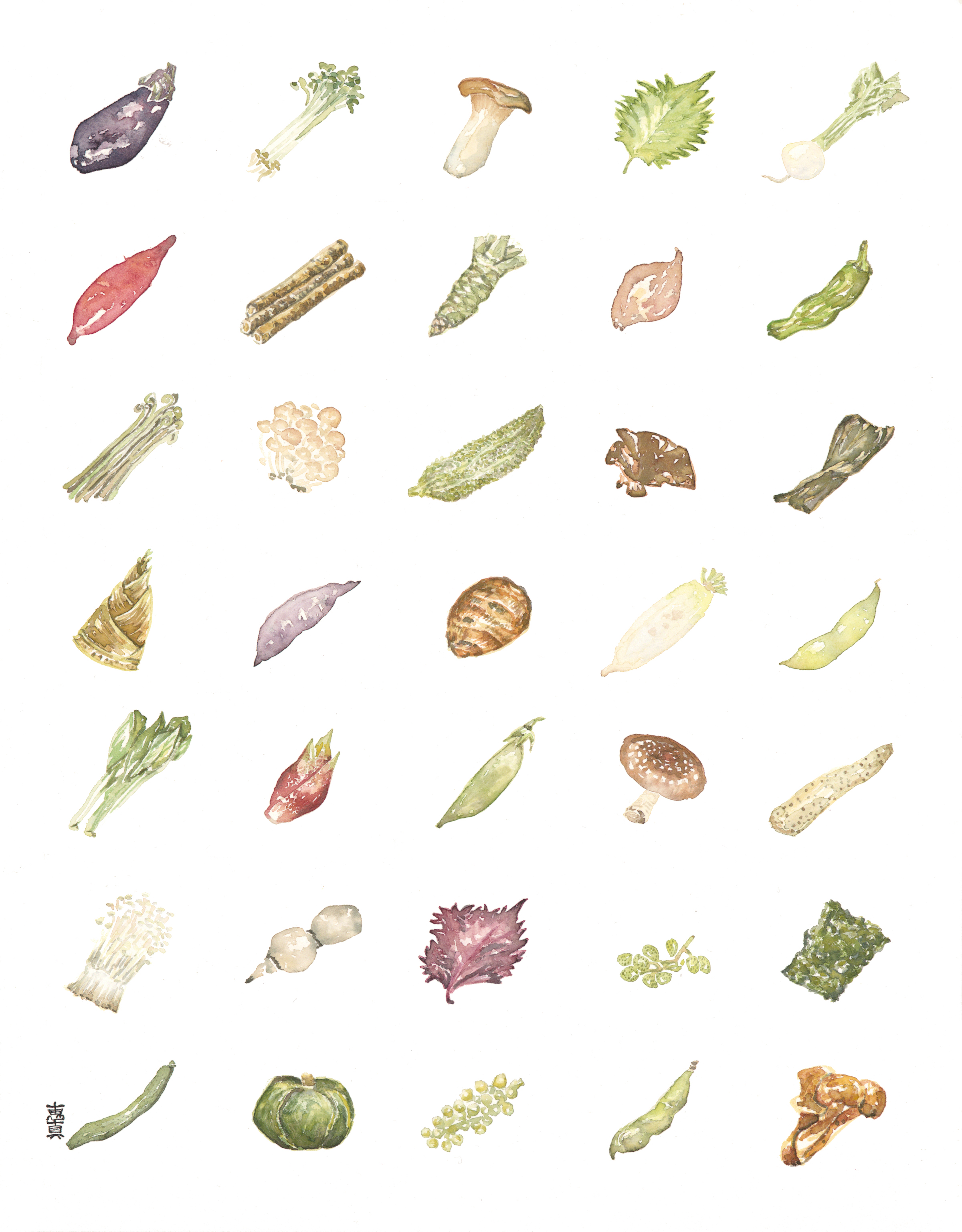 """Yasai [11x14"""" - $80]  giclee print of an original 11x14"""" watercolor painting of 35 types of Japanese vegetables."""