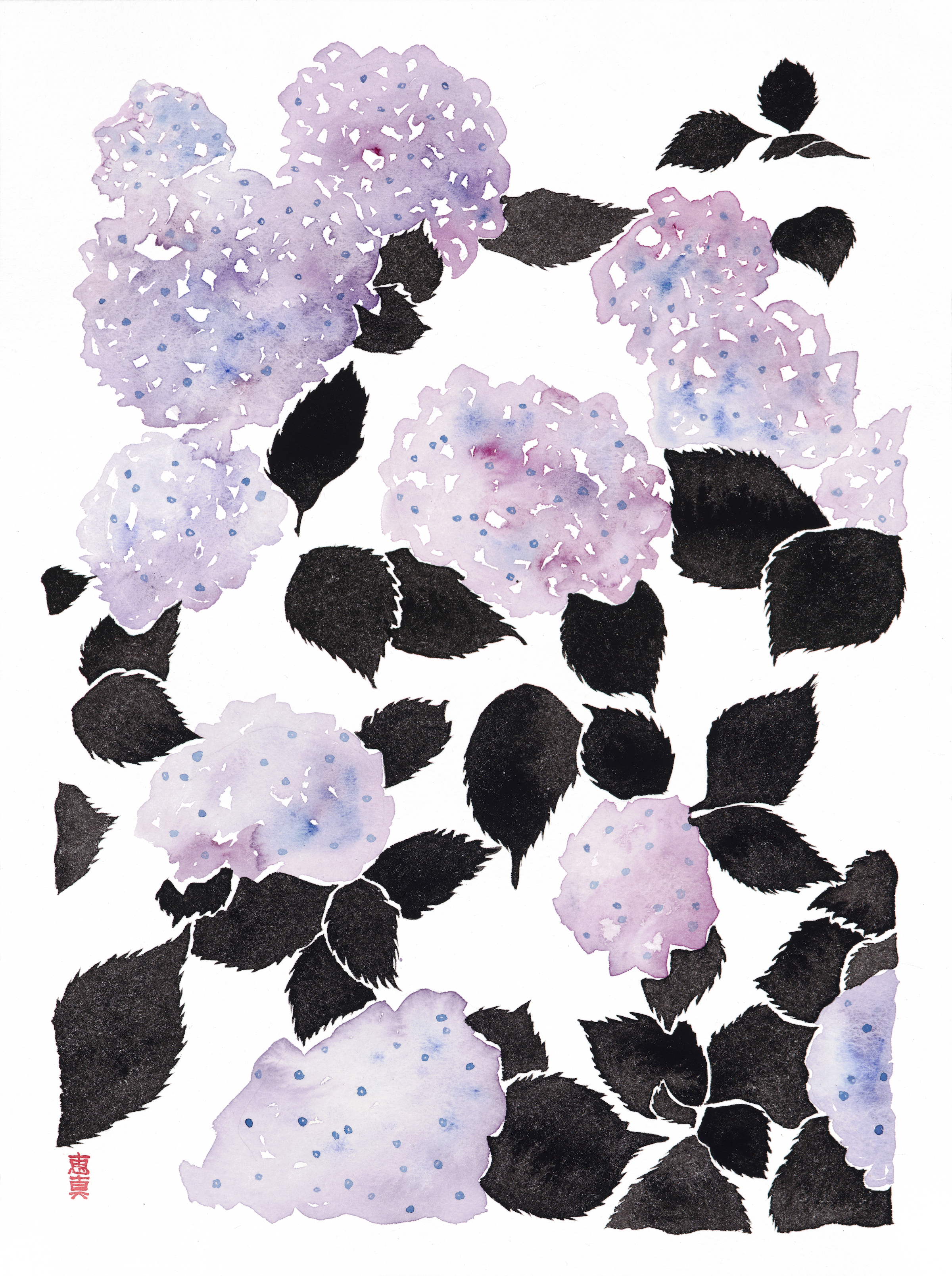 "Hydrangea 1 [11x14"" - $80]  giclee print of an original 12x16"" sumi ink and watercolor painting of hydrangeas in late spring in Tokyo."