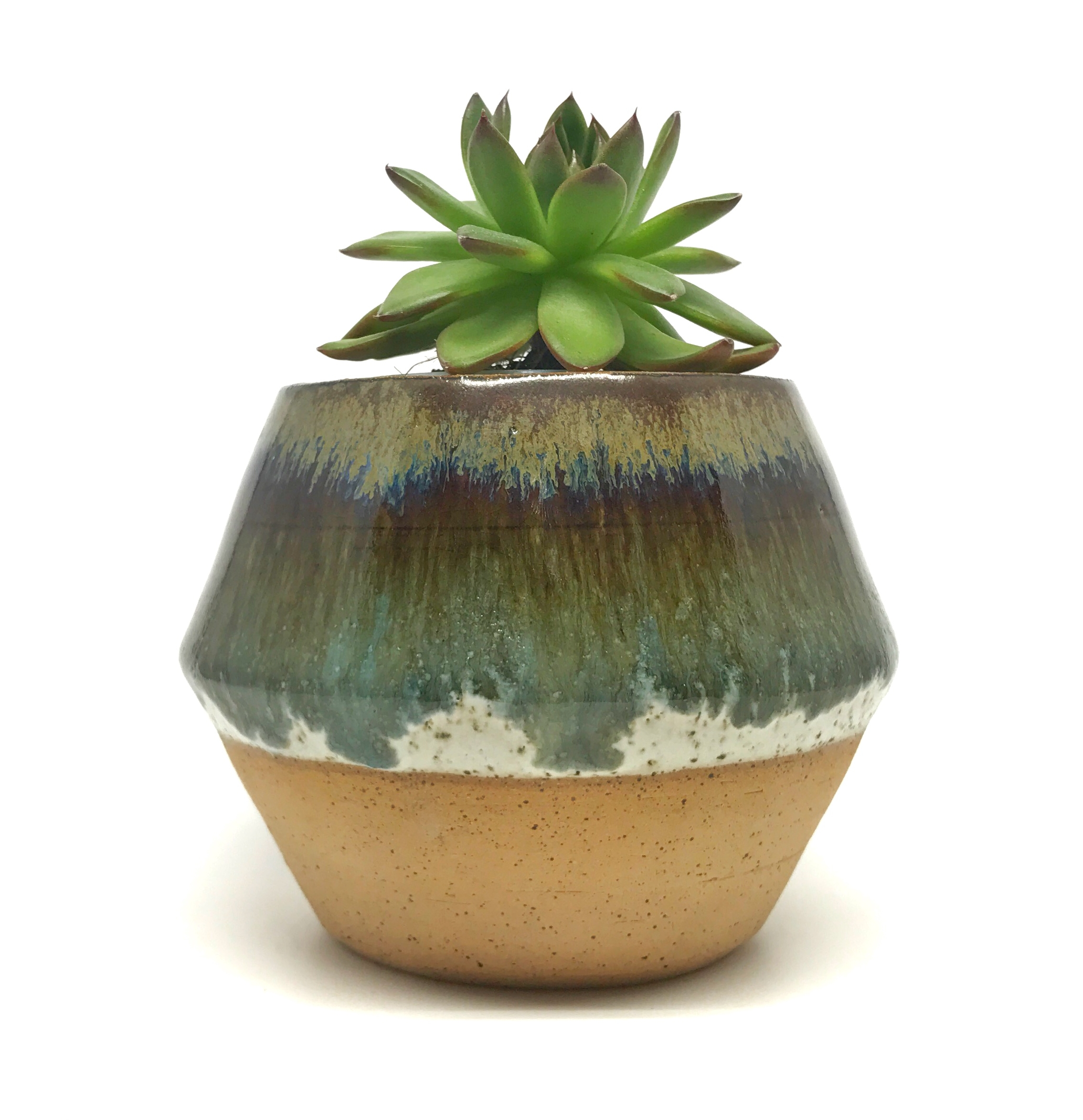 pottery ceramic planter succulent