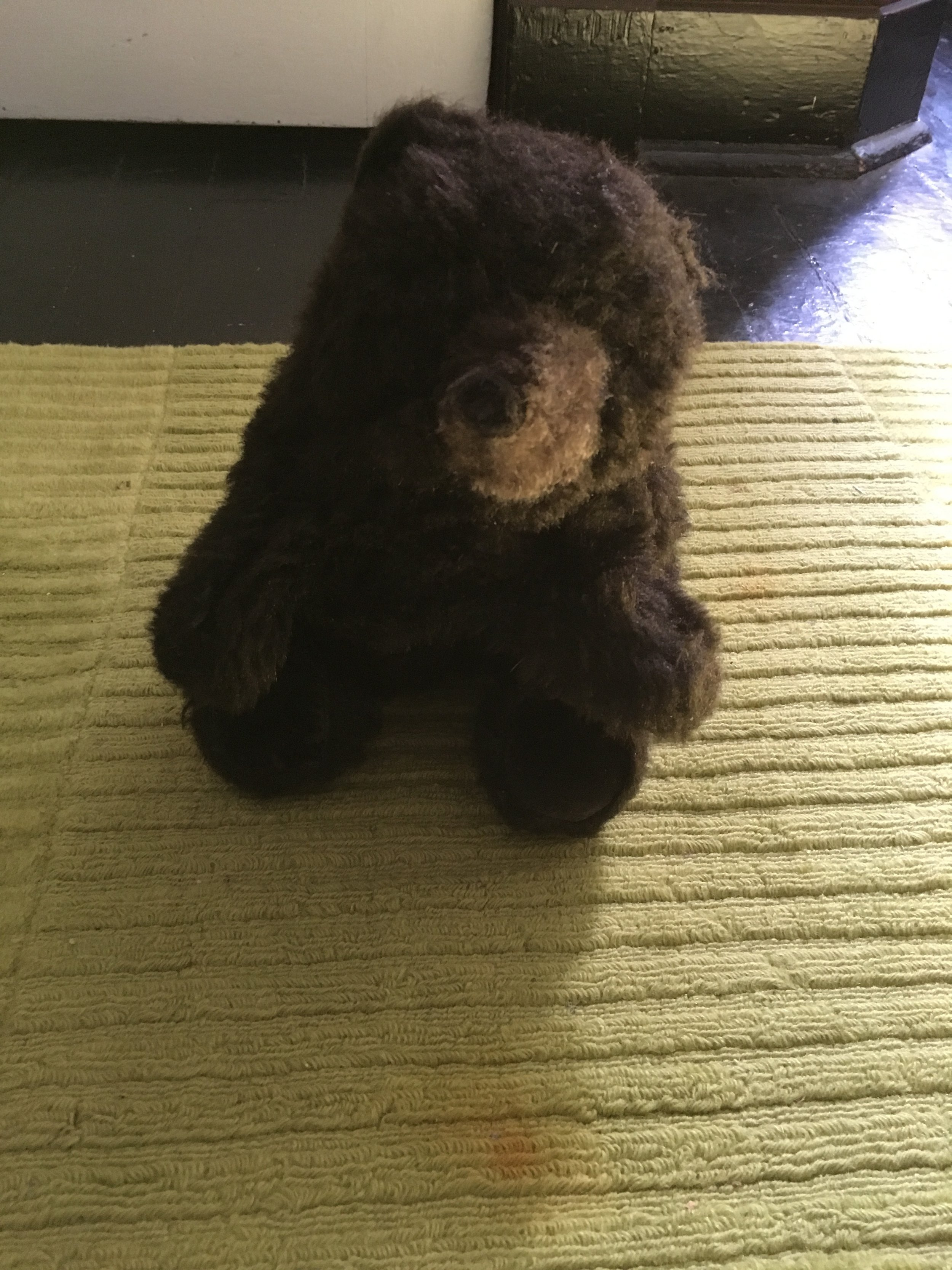 Brown bear puppet $5