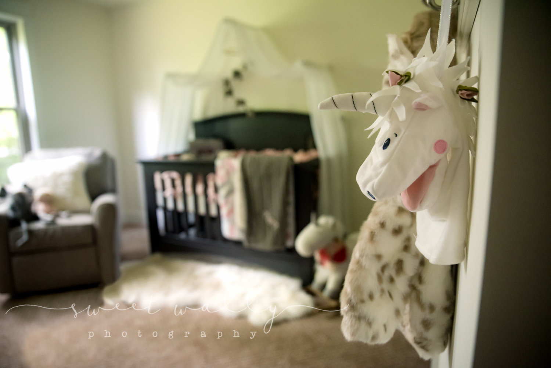 Nursery Details | Sweet Wally Photography | Nashville Newborn Photographer