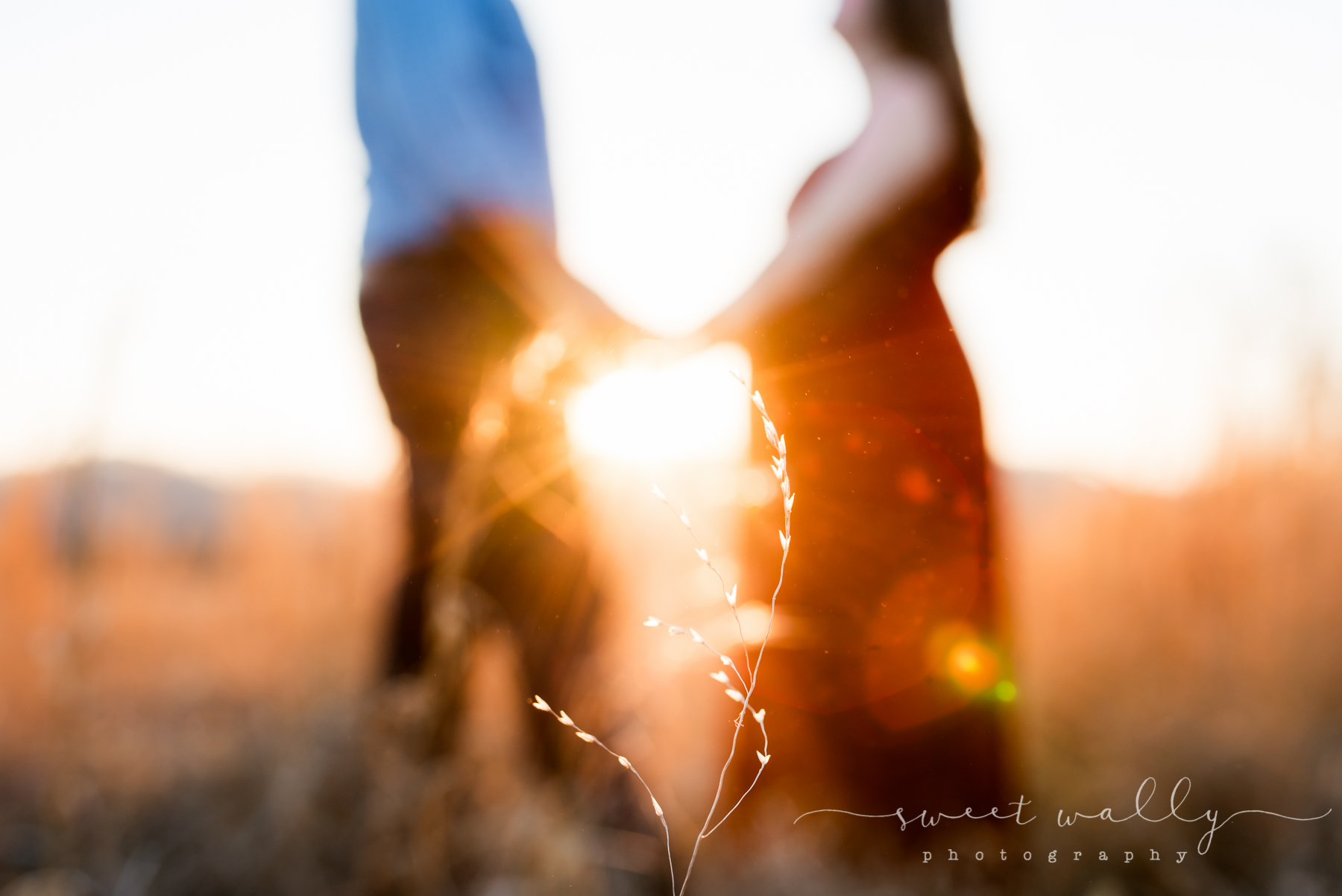 Artfully out of focus | Sweet Wally Photography | Nashville Maternity Photographer
