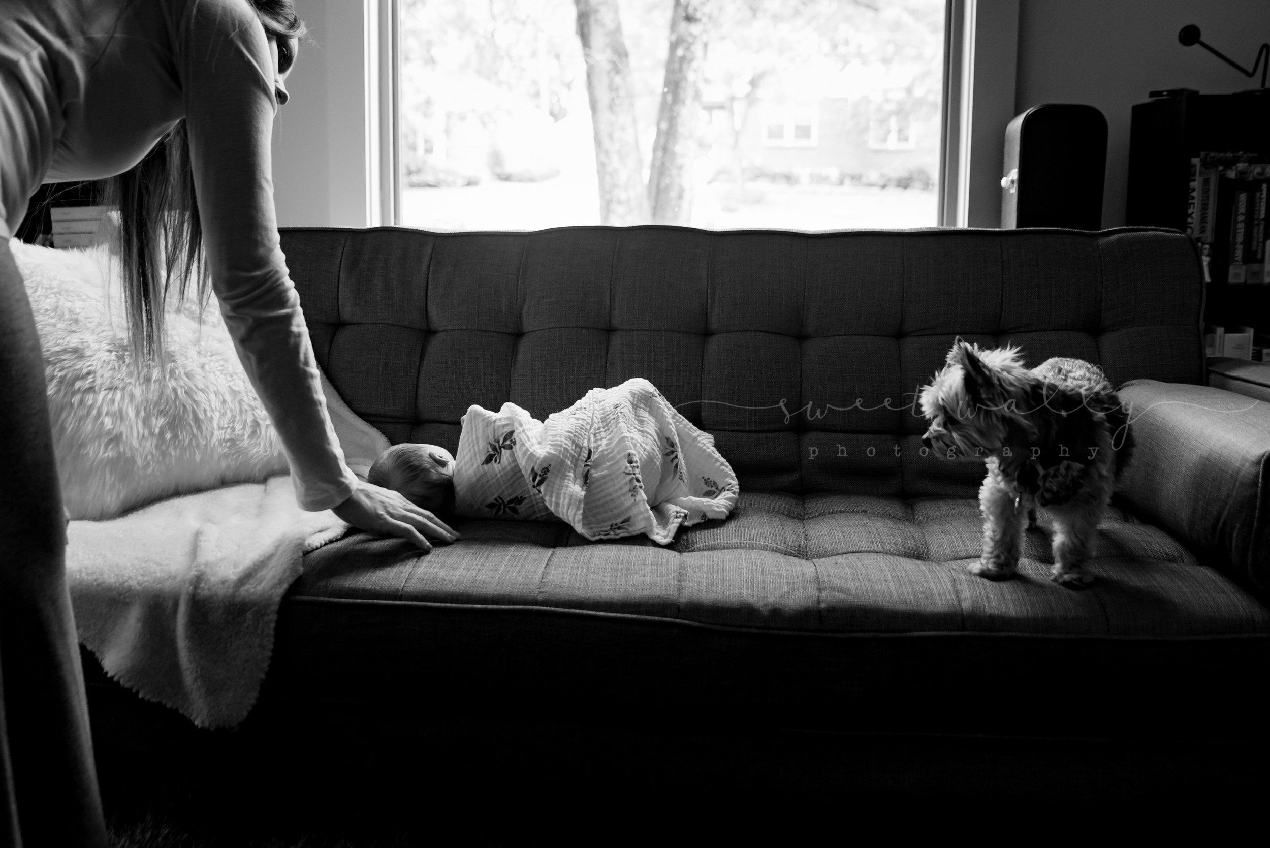 newborn photographer bowling green ky-8.jpg