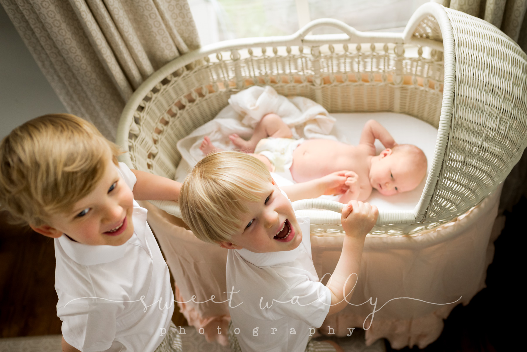 nashville newborn photographer_header.jpg