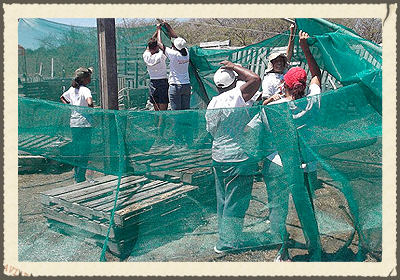 ECO-VILLAGE SOL  has the mission of becoming Curacao and the Caribbean first 100% self-sustainable community and tourism eco village dedicated to environmental and sustainable research, collaboration and education. We envision a world of diverse ways of being, united in harmony with each other and the planet.   https://www.facebook.com/ecovillagesol/timeline